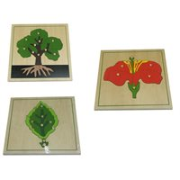 3 Botany Puzzles Leaf Tree Flower