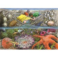 Exploring the Seashore Tray Puzzle