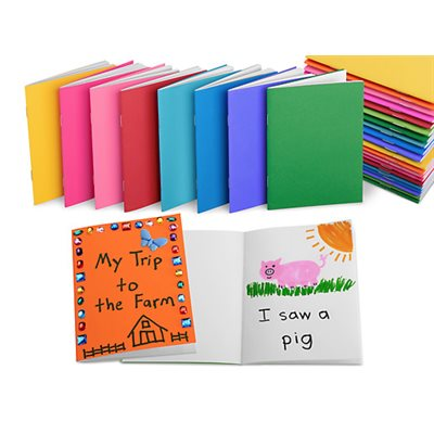Create-Your-Own Mini Books - Set of 30