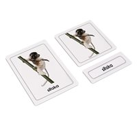 African Animals 3 Part Cards (Plastic & Cut)