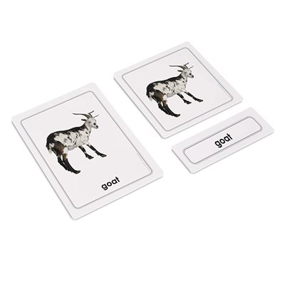 Animal Young 3 Part Cards (Plastic & Cut)