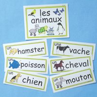 French Word Wall-Halloween