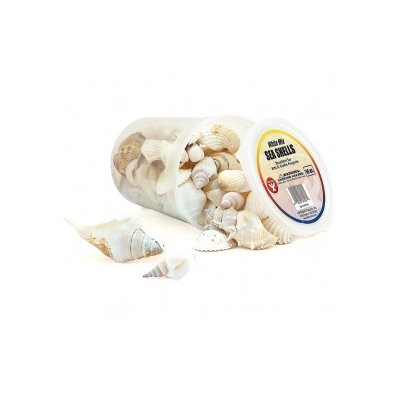 Bucket O' Seashells 16 Oz. White