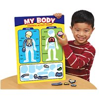 My Body Magnetic Activity Board