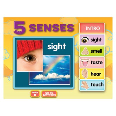 Five Senses Interactive Activities CD-Site License