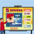 Five Senses Interactive Activities CD-Single License