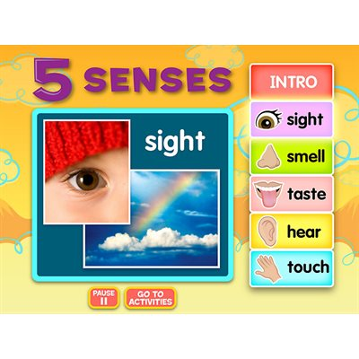 Five Senses Interactive Activities CD-Class License