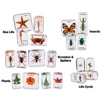 Easy-View Science Specimens - Complete Set