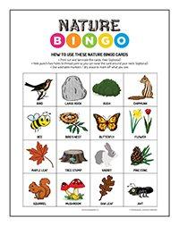 2020 Nature Bingo Thumnail